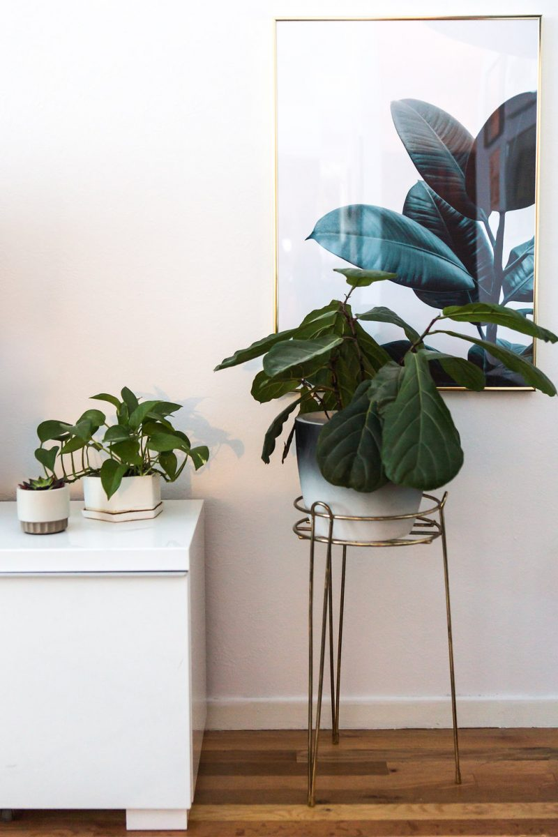 3 tips to freshen up your living space via Simply Grove
