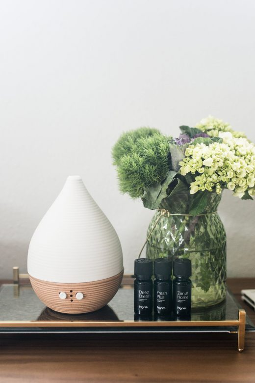 Pilgrim Diffuser via Simply Grove